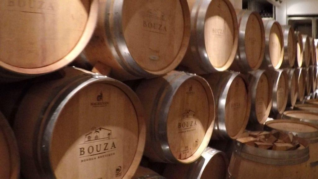 Barris de carvalho Bodega Bouza - Vinicola em Montevideu